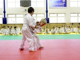 judo-8