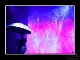 luz11