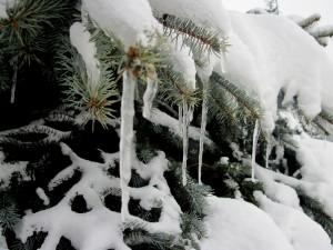 Są i pozytywne aspekty zimy. Fot. BG