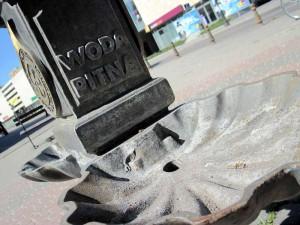 Czy Urząd Miasta Siedlce powinien zadbać o to, aby z jednej fontanny płynęła woda pitna?